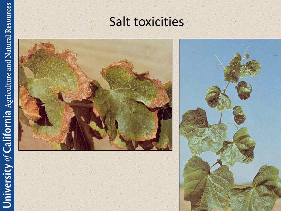 Salt toxicities