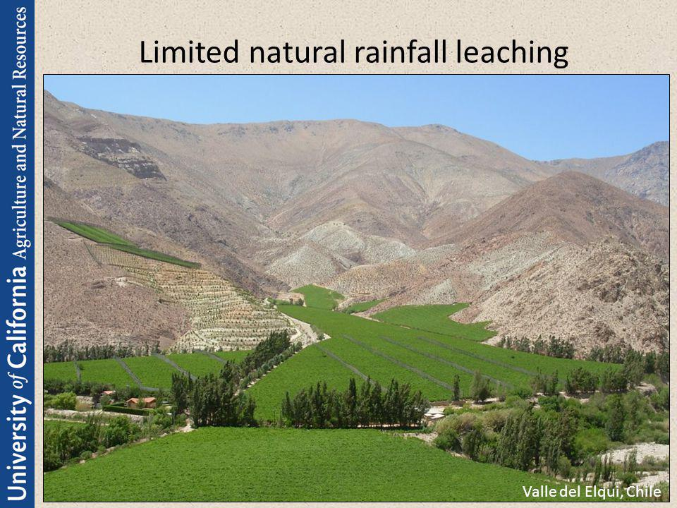 Limited natural rainfall leaching