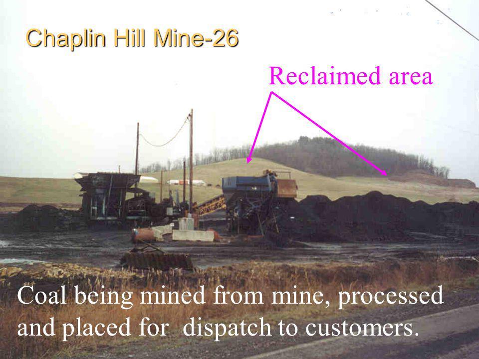 Chaplin Hill Mine-26 Reclaimed area.