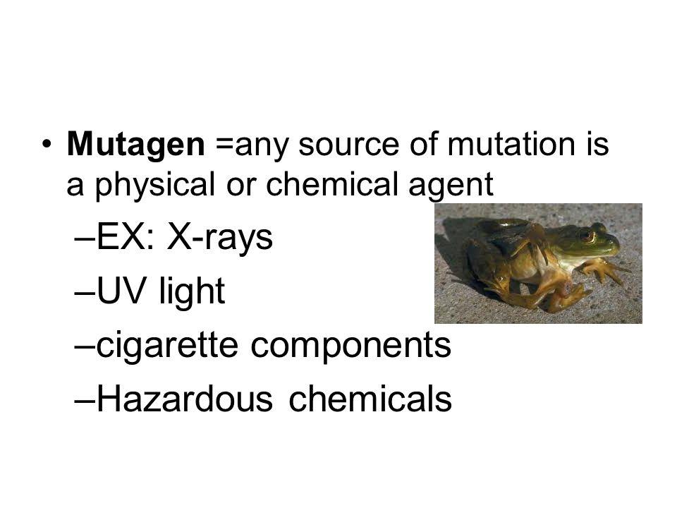 EX: X-rays UV light cigarette components Hazardous chemicals