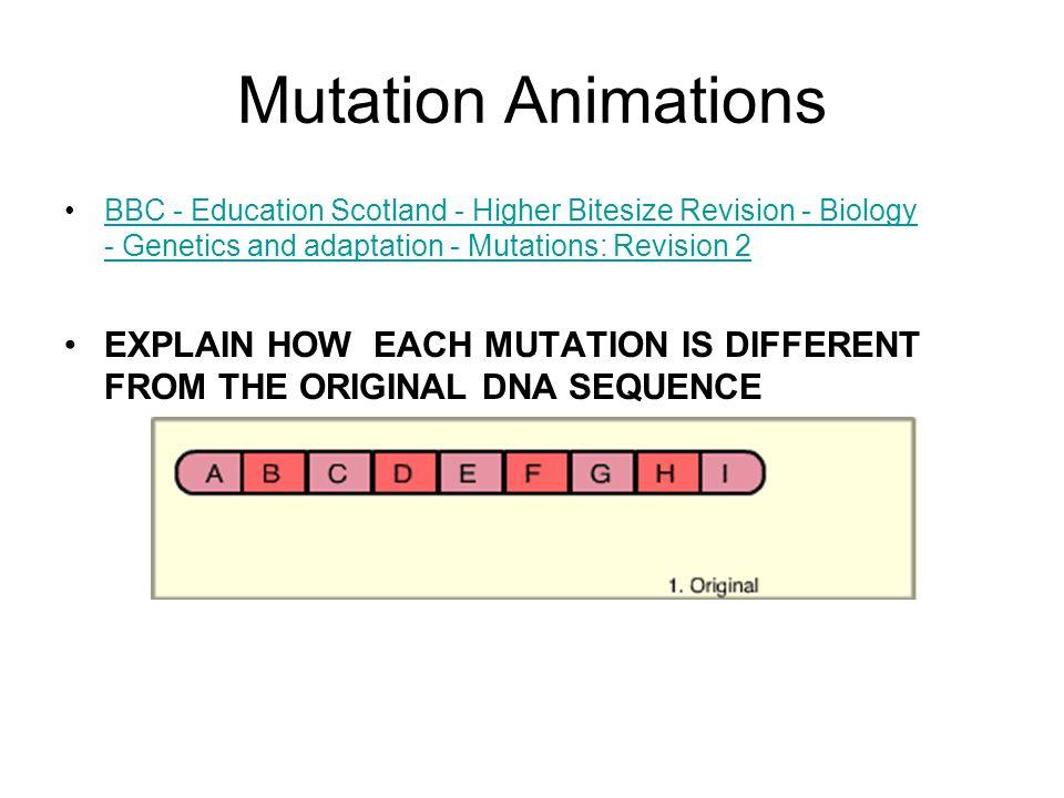 Mutation Animations BBC - Education Scotland - Higher Bitesize Revision - Biology - Genetics and adaptation - Mutations: Revision 2.