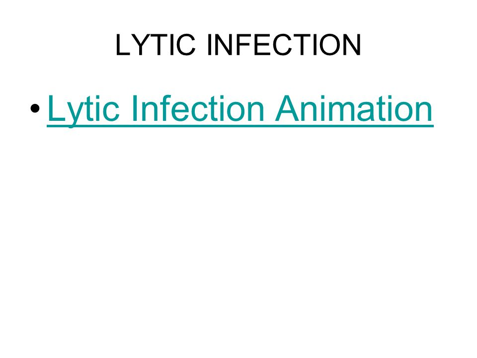 Lytic Infection Animation