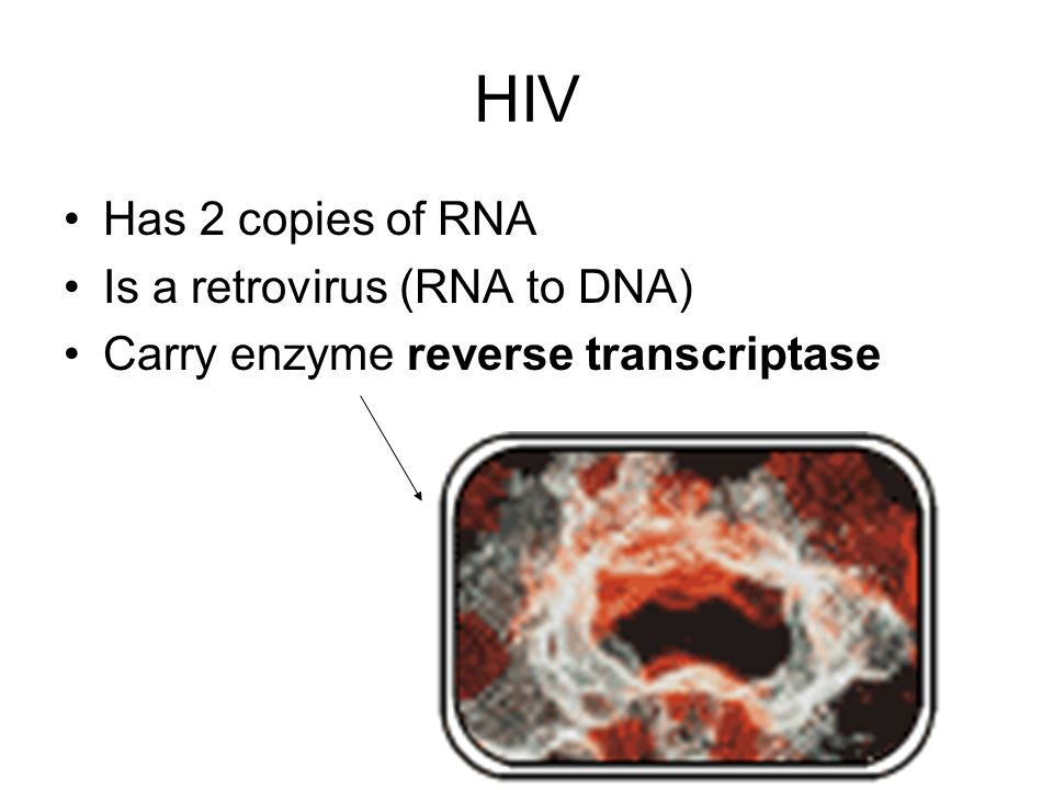 HIV Has 2 copies of RNA Is a retrovirus (RNA to DNA)