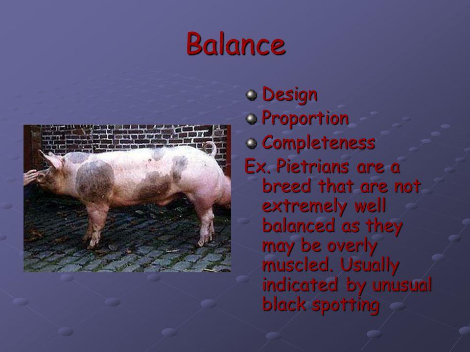 Balance Design Proportion Completeness