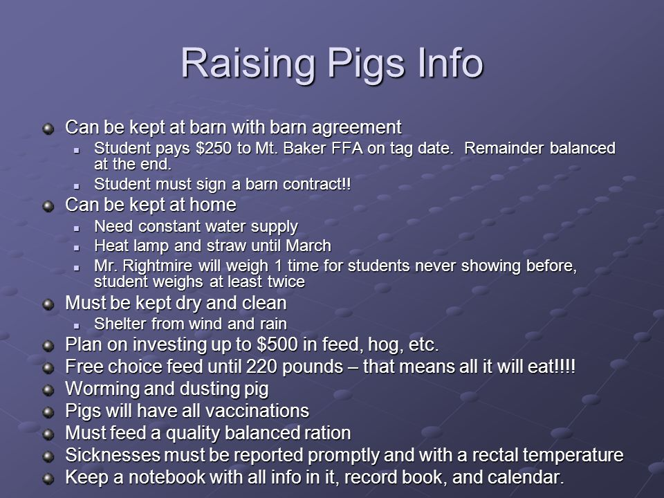 Raising Pigs Info Can be kept at barn with barn agreement
