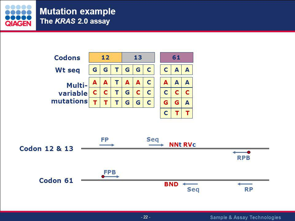 Mutation example The KRAS 2.0 assay