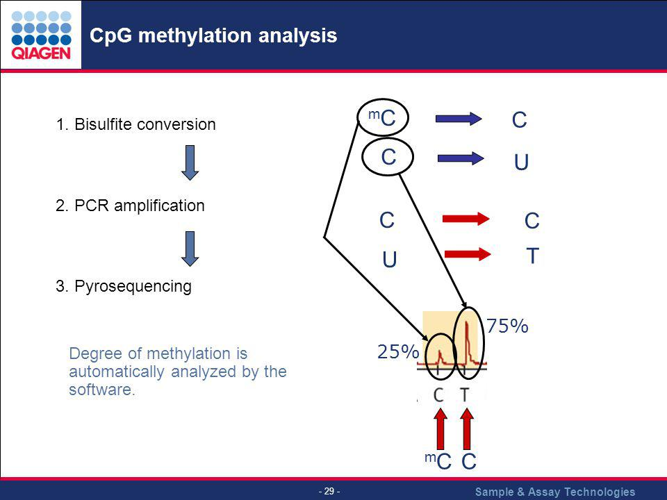 CpG methylation analysis