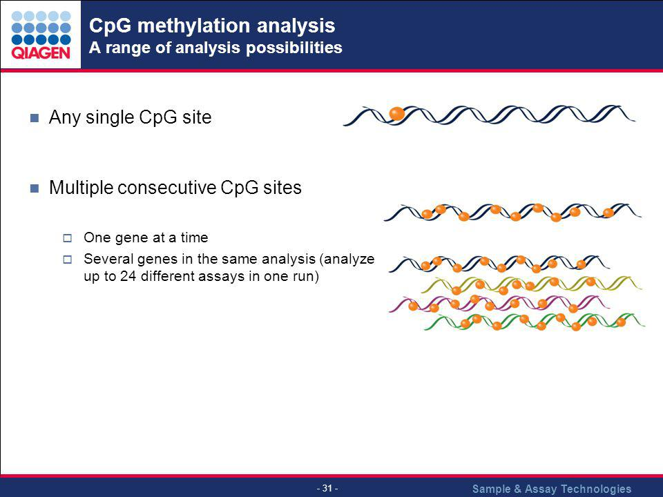 CpG methylation analysis A range of analysis possibilities