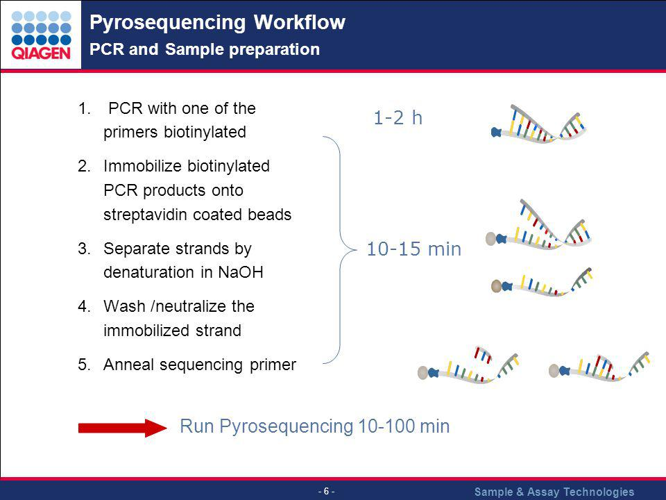 Pyrosequencing Workflow PCR and Sample preparation