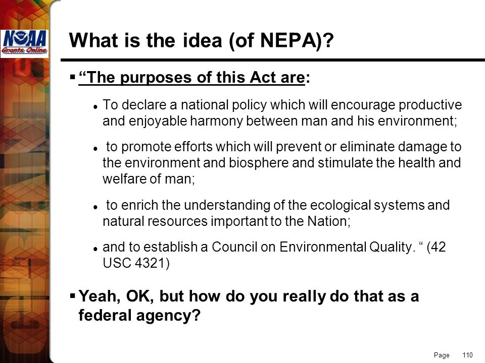 What is the idea (of NEPA)