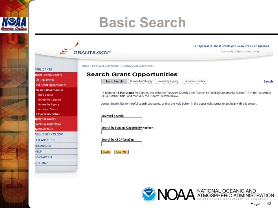 Grants Online Basic Search 43