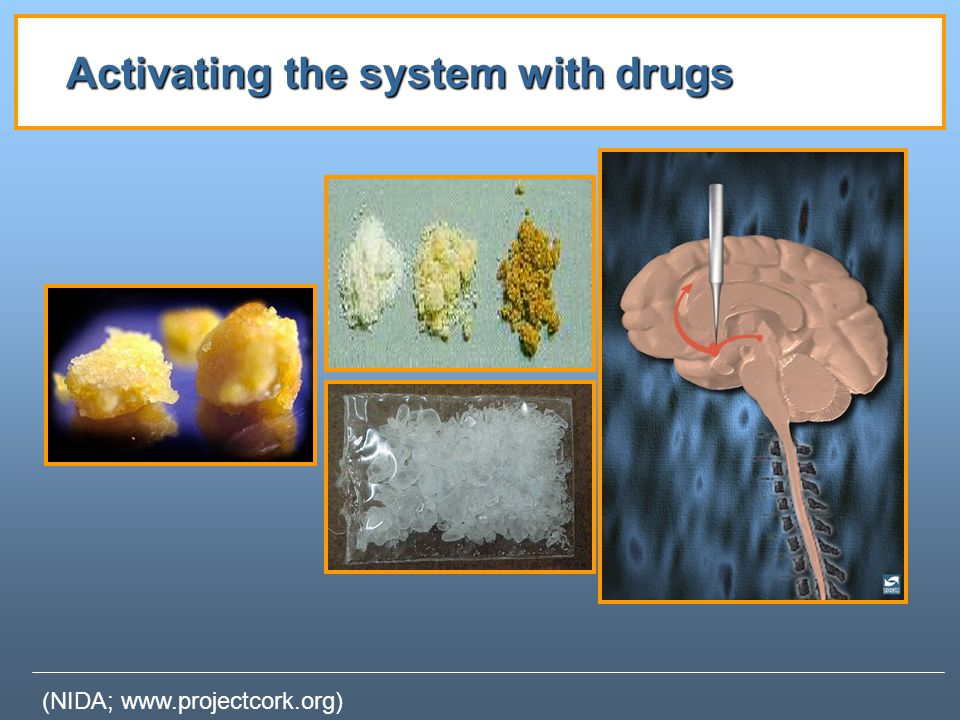 Activating the system with drugs