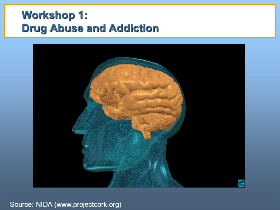 Workshop 1: Drug Abuse and Addiction
