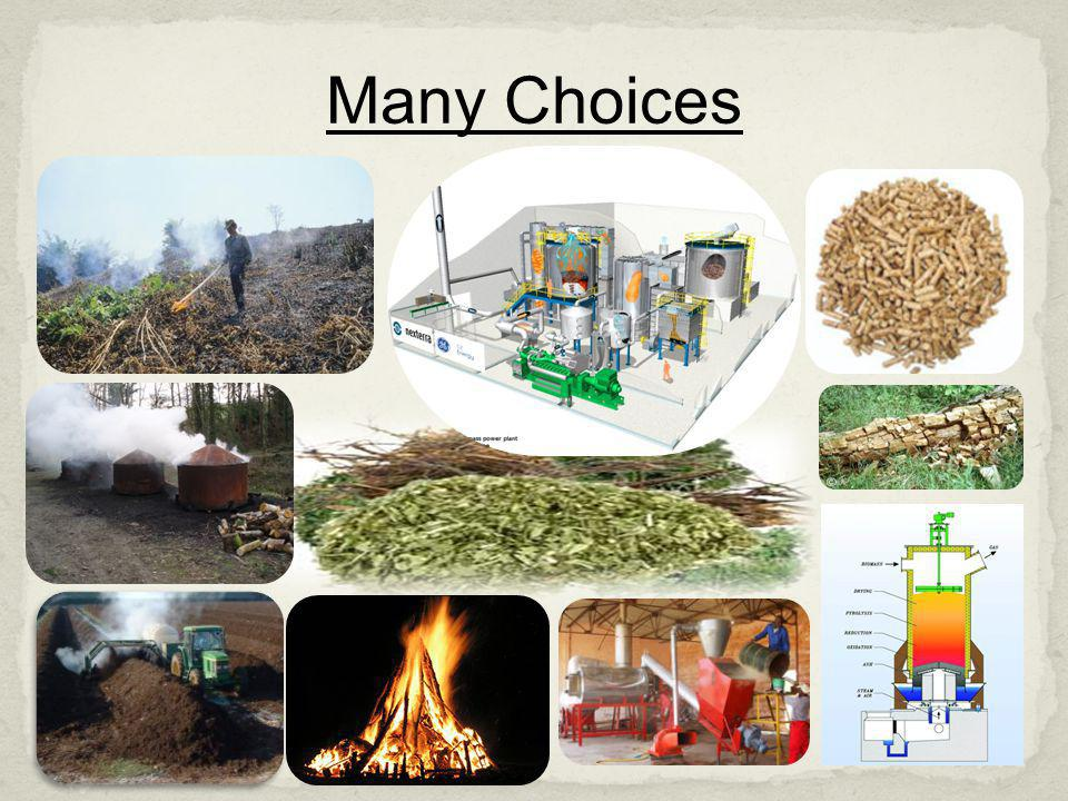 Many Choices Cellulostic biomass