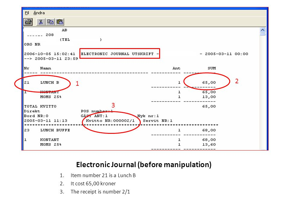 Electronic Journal (before manipulation)