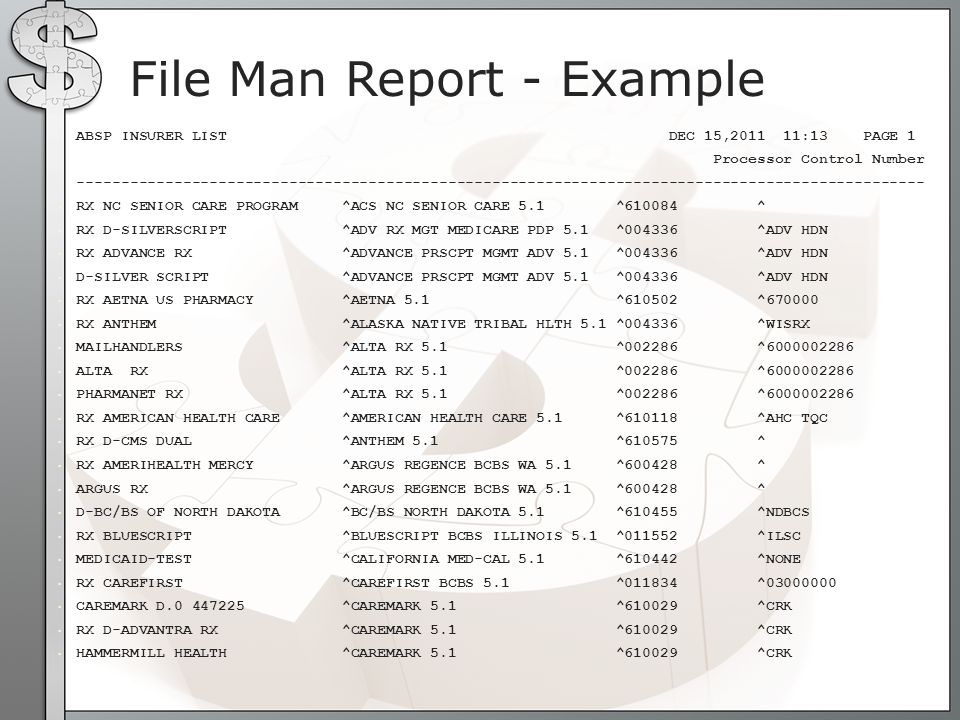 File Man Report - Example
