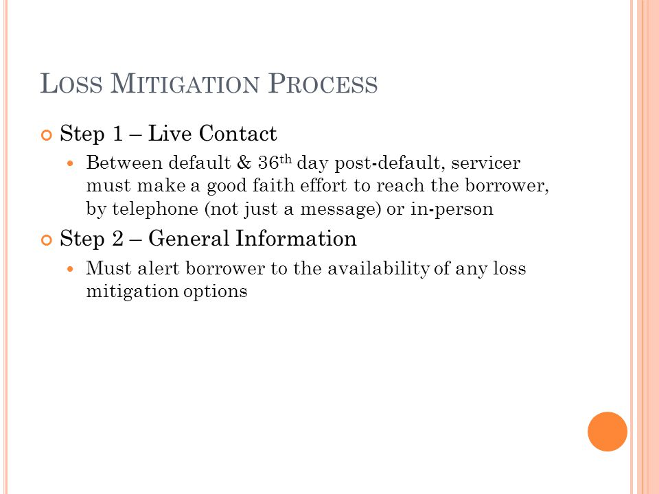 Loss Mitigation Process