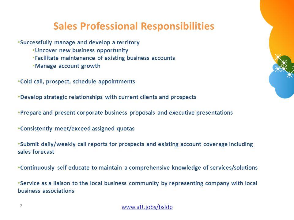 Sales Professional Responsibilities