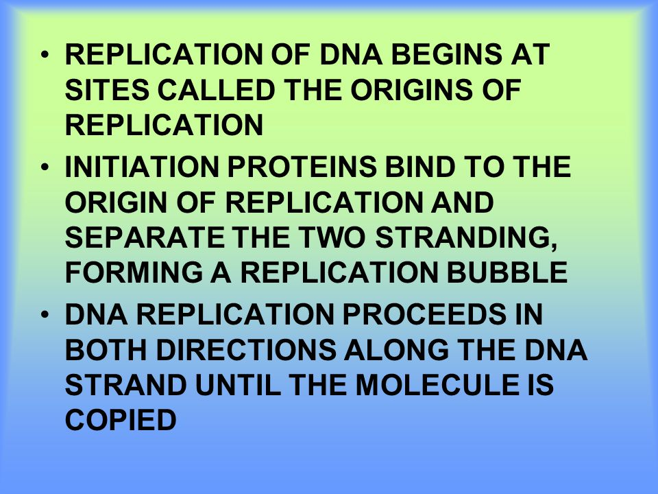 REPLICATION OF DNA BEGINS AT SITES CALLED THE ORIGINS OF REPLICATION