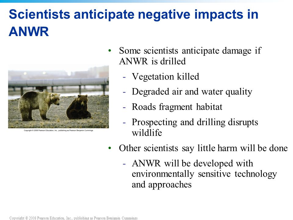 Scientists anticipate negative impacts in ANWR