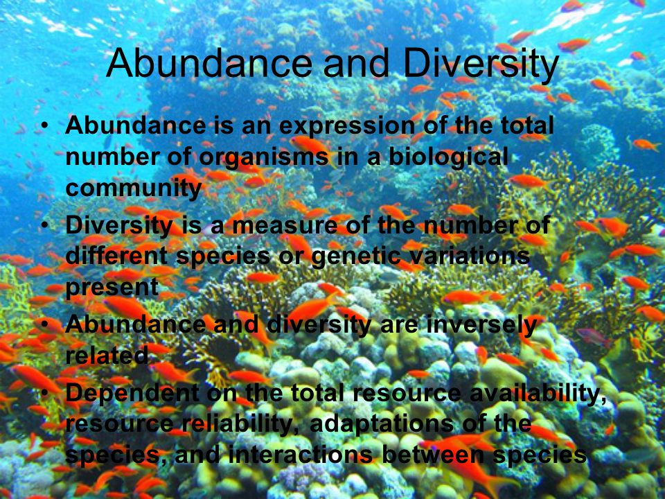 Abundance and Diversity