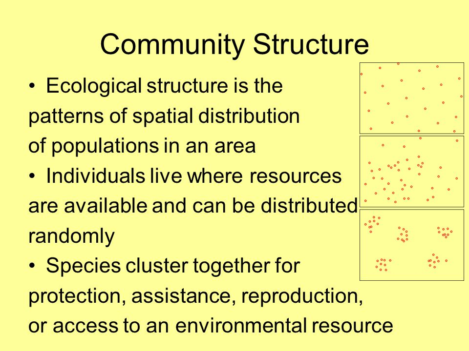Community Structure Ecological structure is the