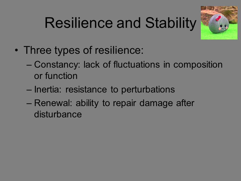 Resilience and Stability
