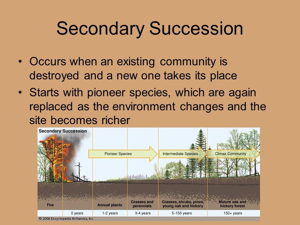 Secondary Succession Occurs when an existing community is destroyed and a new one takes its place.
