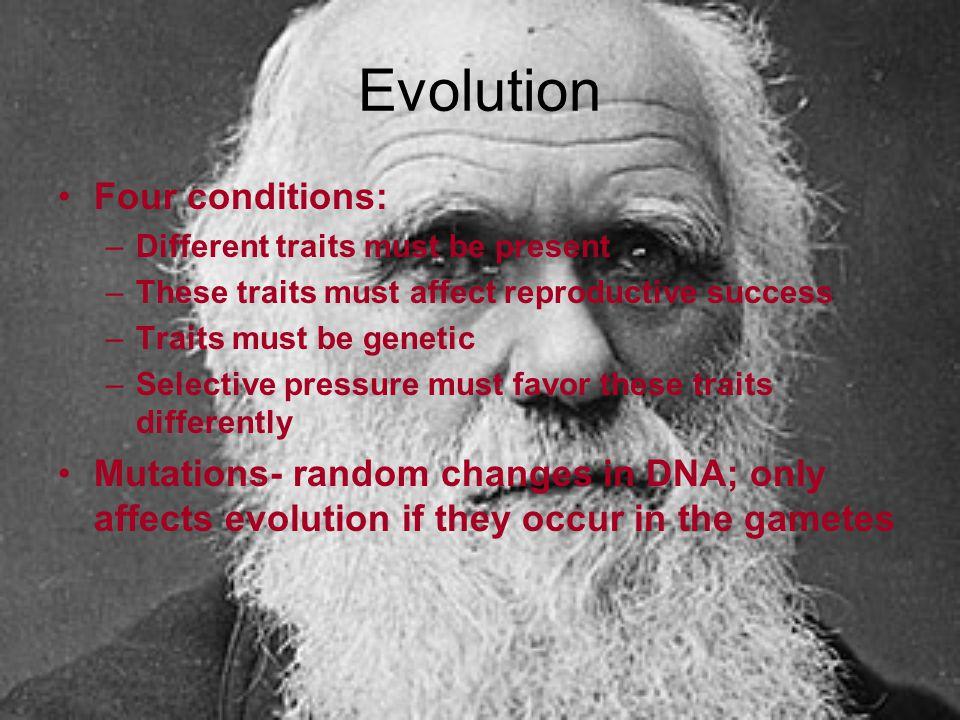 Evolution Four conditions:
