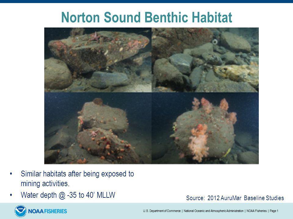 Norton Sound Benthic Habitat