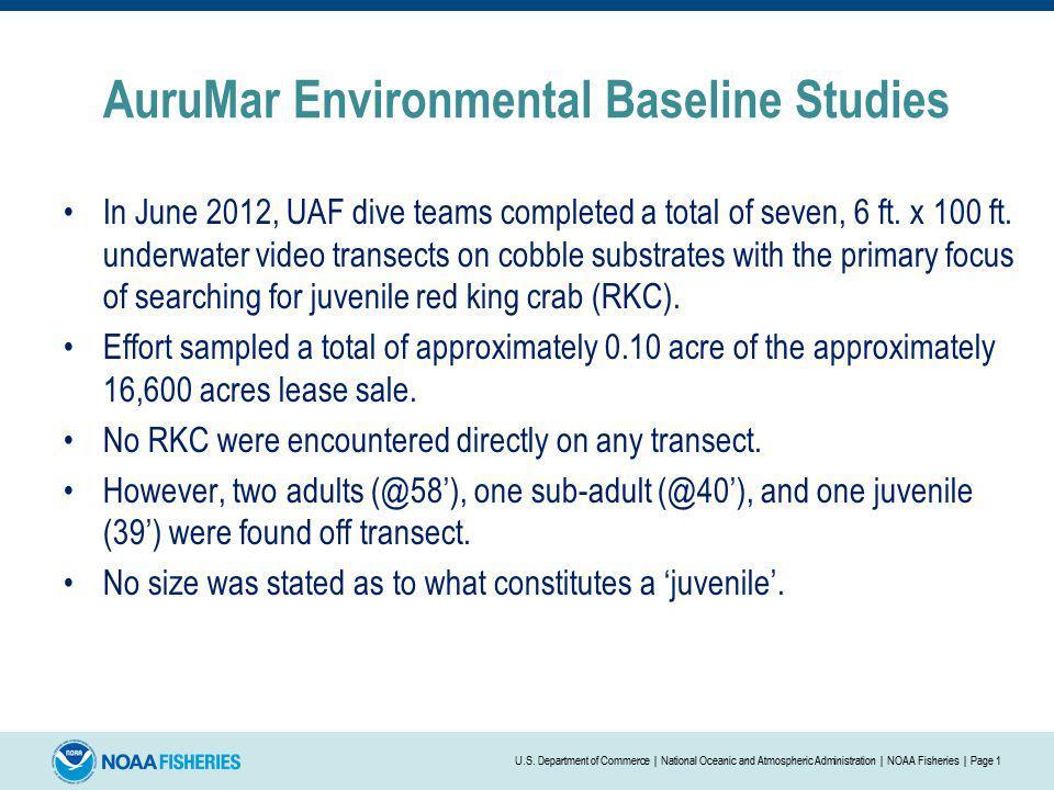 AuruMar Environmental Baseline Studies