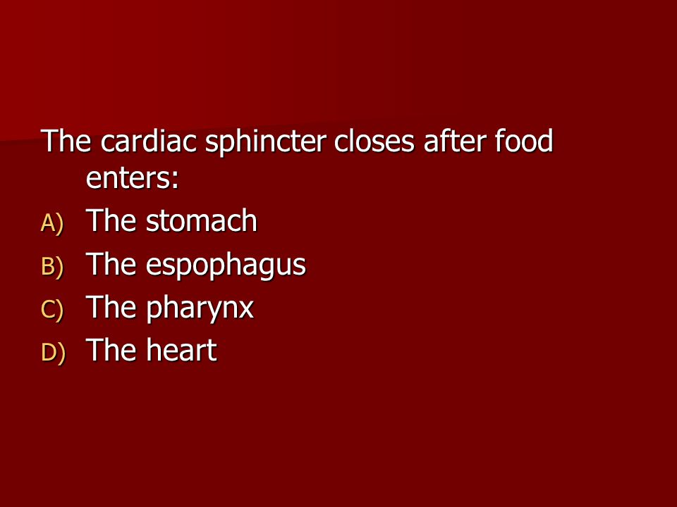 The cardiac sphincter closes after food enters: