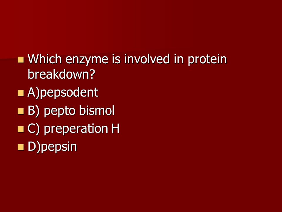 Which enzyme is involved in protein breakdown