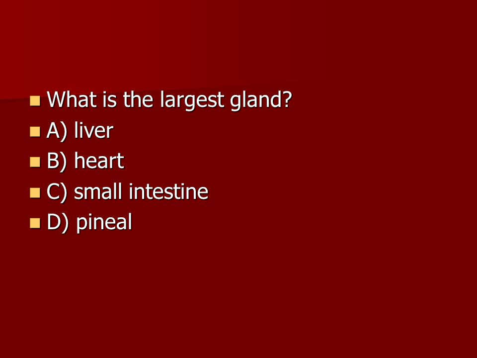 What is the largest gland