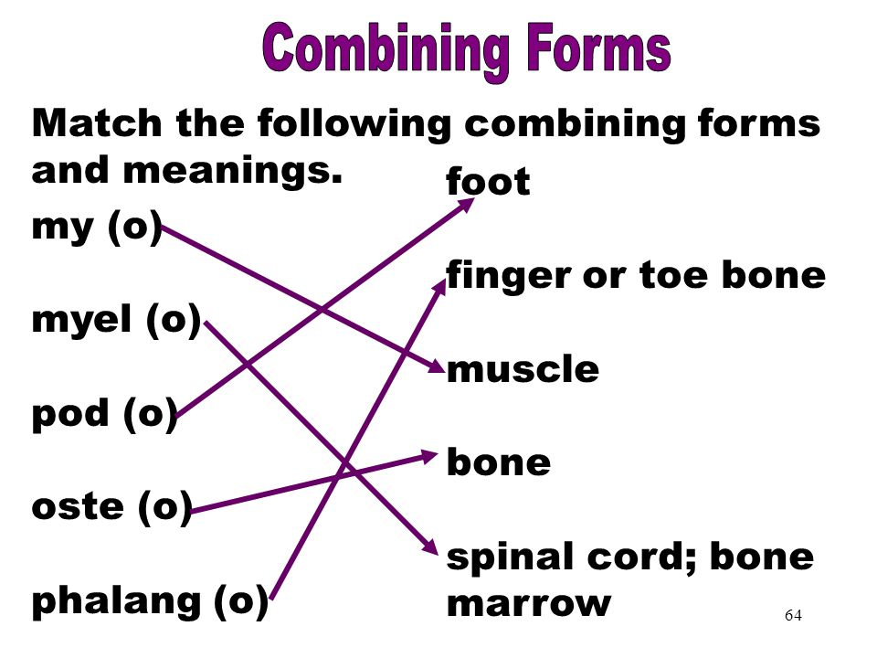 Combining Forms Part 3 Combining Forms