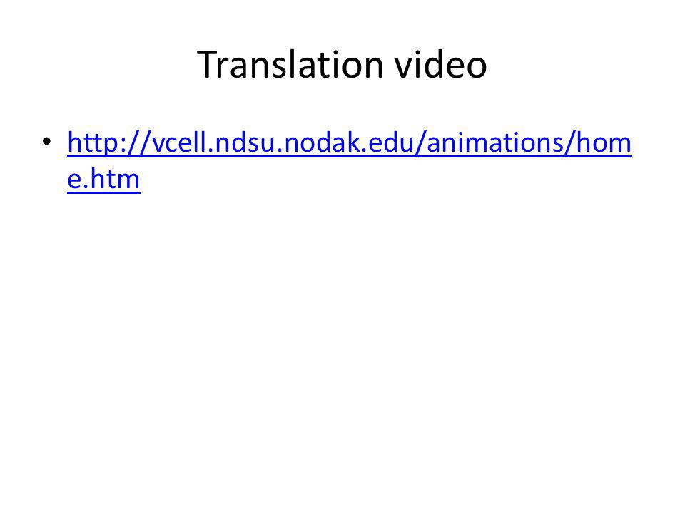 Translation video http://vcell.ndsu.nodak.edu/animations/home.htm