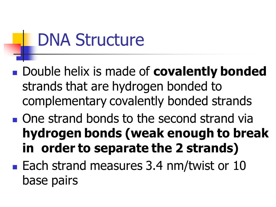 DNA Structure Double helix is made of covalently bonded strands that are hydrogen bonded to complementary covalently bonded strands.