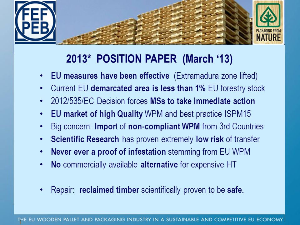 2013* POSITION PAPER (March '13)