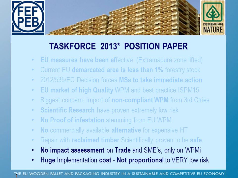 TASKFORCE 2013* POSITION PAPER