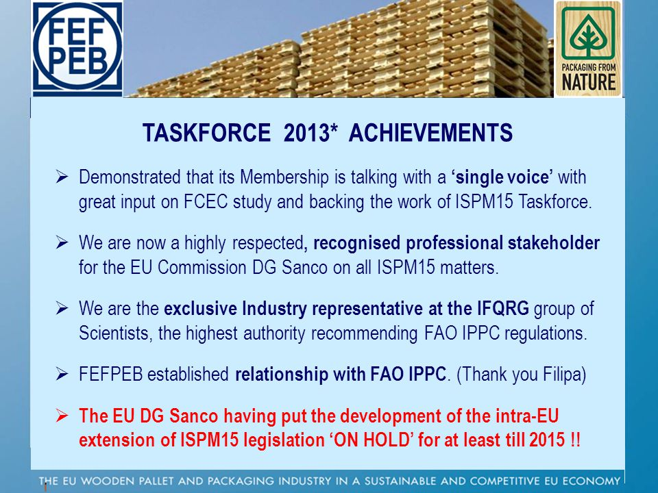 TASKFORCE 2013* ACHIEVEMENTS