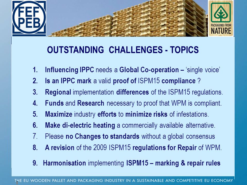 OUTSTANDING CHALLENGES - TOPICS