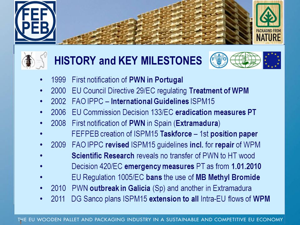 HISTORY and KEY MILESTONES