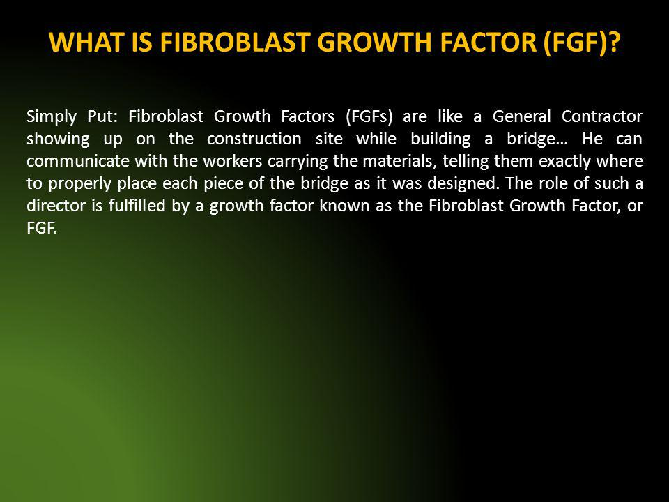 WHAT IS FIBROBLAST GROWTH FACTOR (FGF)