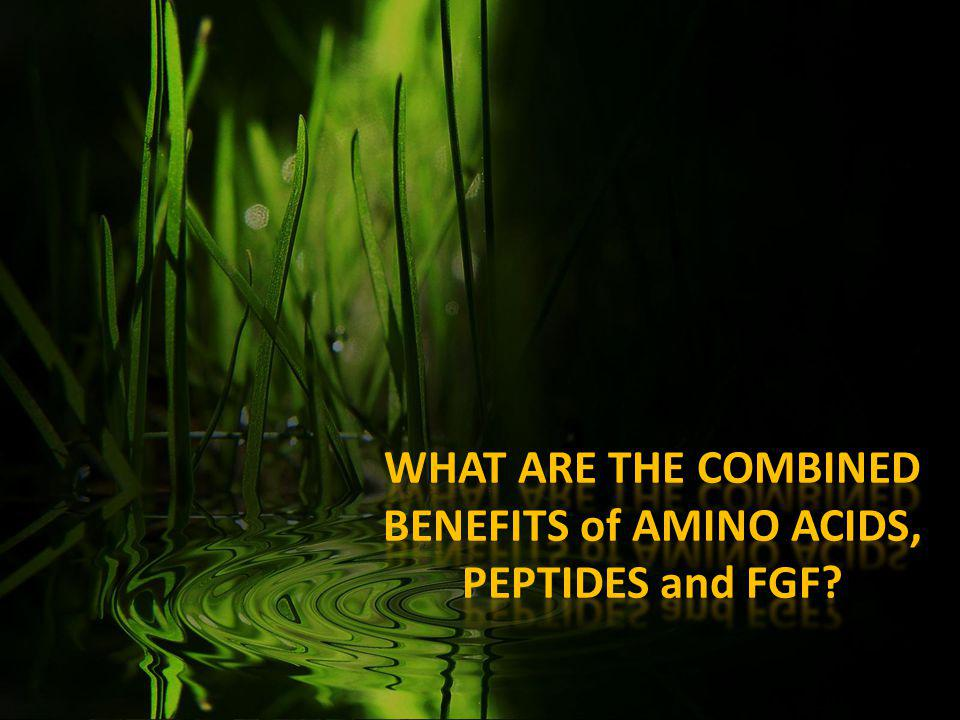 WHAT ARE THE COMBINED BENEFITS of AMINO ACIDS, PEPTIDES and FGF