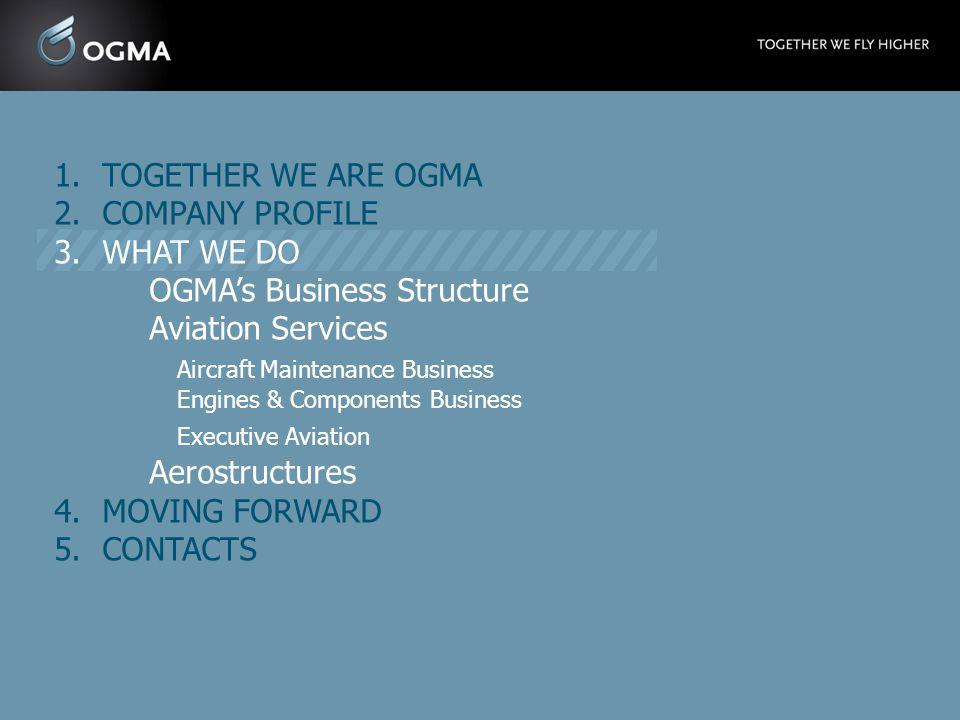 OGMA's Business Structure Aviation Services