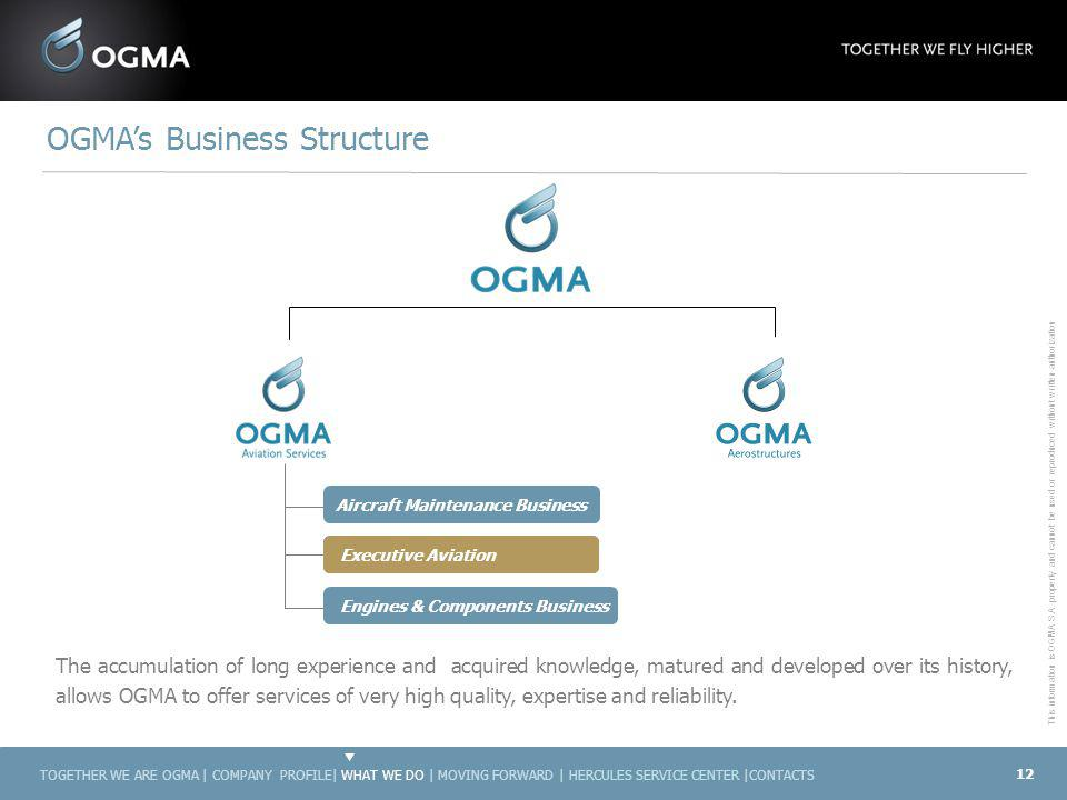 OGMA's Business Structure