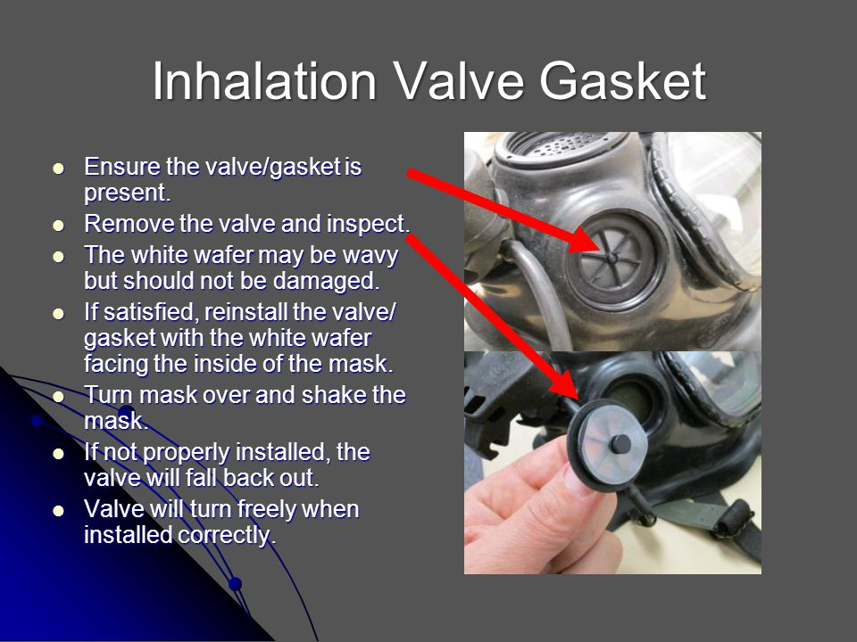 Inhalation Valve Gasket