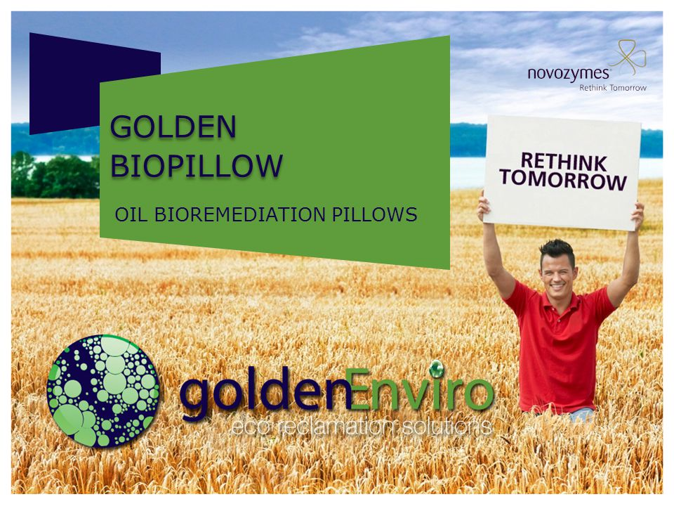Golden biopillow OIL BIOREMEDIATION PILLOWS