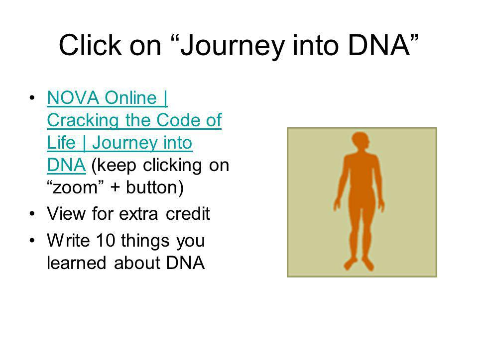 Click on Journey into DNA