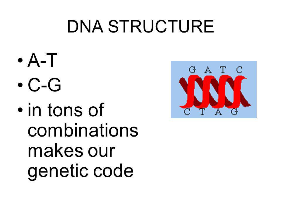 in tons of combinations makes our genetic code